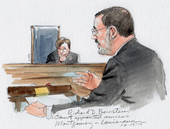 Richard D. Bernstein as Court-appointed amicus