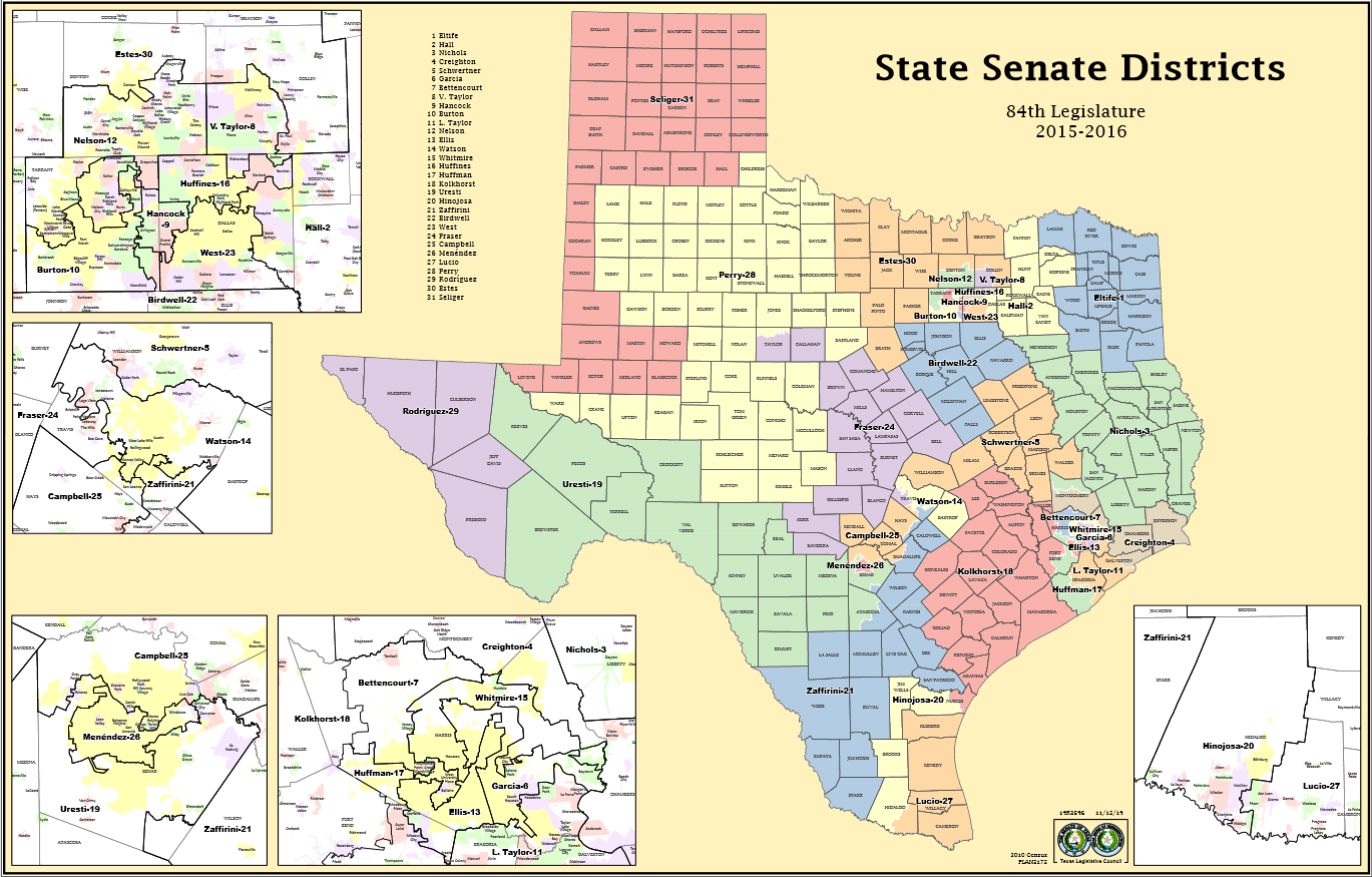TX Senate Map