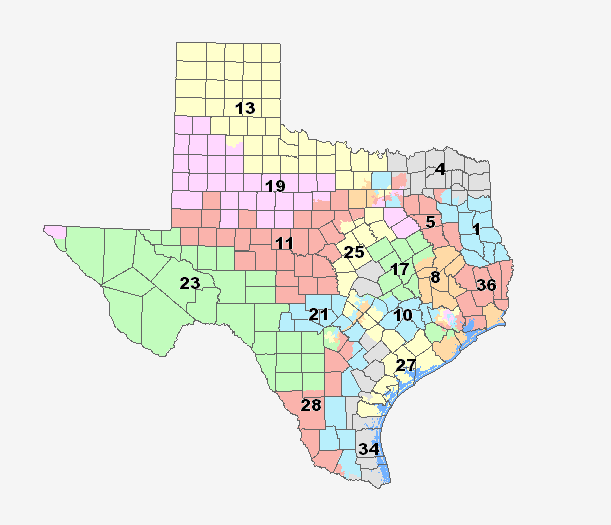 US Supreme Court Hears Case of Texas Redistricting Maps