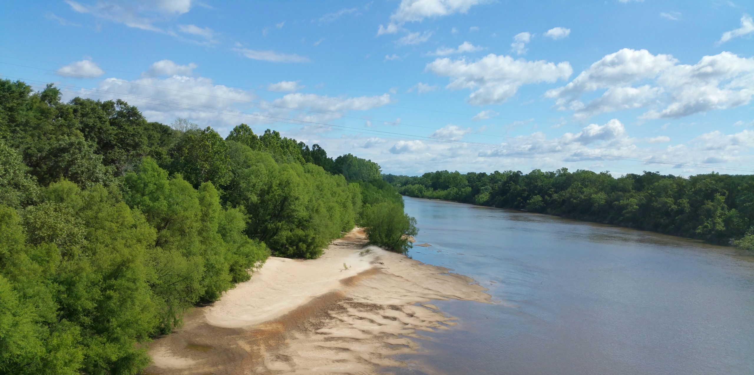 Apalachicola River under blue sky with trees on riverbank